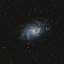 M33 the Triangulum galaxy,                                Steve Coates