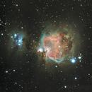 M42 Orion's Nebula,                                Casey Fox
