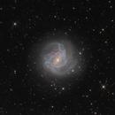 M83,                                Xing Keyu