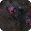 Cygnus - A Mosaic of the Swan's Heart,                                Gabriel R. Santos...