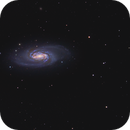 NGC 2903,                                Anthony Quintile