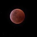 2019 Lunar Eclipse,                                Bob Lukasik