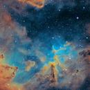 IC1805,                                Ferrante Enriques