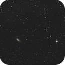 NGC 3115,                                Astrolabo - Denis Bailly