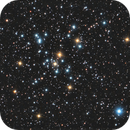 M 41 Open Cluster,                                Gerson Pinto