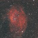 Sh2 - 261 Lower`  s Nebel,                                Alexander Grasel