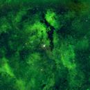 Gamma Cygnus,                                rkayakr