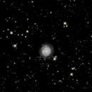 NGC3344,                                Lucien Falco