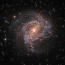 Messier 83,                                Jeff