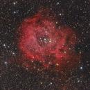 Nebulosa Roseta RGB+Hα,                                Faus Márquez