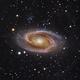 M81 Holmberg IX and some IFN - work in progress,                                NicolaAntonio