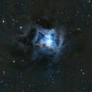 Iris Nebula NGC7023,                                PiPais
