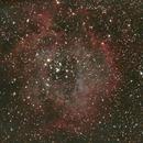 Rosette Nebula,                                Elboubou