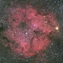 IC 1396,                                Sébastien Kesteloot