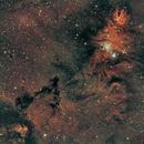 NGC 2264,                                Matt Dugas