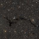 Barnard 150 - Seahorse Nebula,                                Ivan Bosnar