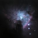 Trapezium Cluster,                                Samuel
