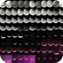 Lunar Eclipse (jan 2019),                                tavaresjr
