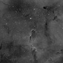 IC1396 - Elephant's trunk nebula (Test),                                Marc