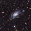 ngc2403 (Caldwell 7),                                Chris Alberts
