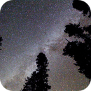 The Milky Way from Sequoia National Park,                                Norman Tajudin