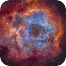Rosette Nebula - Caldwell 49 NBRGB,                                Vergnes Christophe