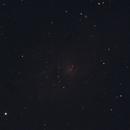 M33 Triangulum Galaxy,                                Tony Blakesley