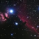 IC434 Horesehead Nebula,                                Ray Ellersick