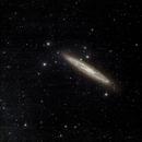 NGC253 - Sculptor Galaxy (LRGB),                                Richard Bratt