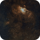 A Mini Study of the Birds: The Eagle and the Swan - Messier 16 and Messier 17,                                Timothy Martin & Nic Patridge