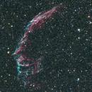 NGC 6995,                                Robert Shepherd