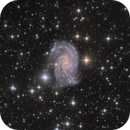 NGC 2835,                                Casey Good