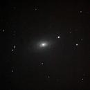 Sunflower Galaxy M63,                                Dylan Woodbrey