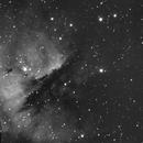 NGC281,                                Eddy Wicart
