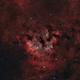 NGC 7822 LRGB+HOO,                                Bradley Hargrave