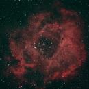 Rosette Nebula,                                David Quattlebaum