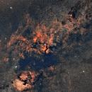 constellation du cygne,                                laup1234