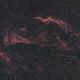 NGC 6960 - HaRGB,                                Terry
