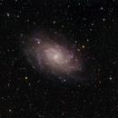 M33-Triangulum Galaxy,                                Gauthier Vasseur
