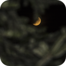 Eclipse Lune,                                logthin