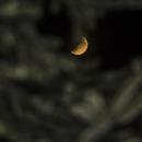 Eclipse Lune,                                  logthin