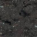 Barnard 170 and Barnard 174,                                Alessandro Micco