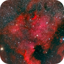 NGC 7000 North America Nebula and Golf of Mexico,                                Karl-Heinz