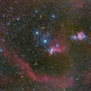 Wide Field Orion Constellation and Nebulas,                                Rodrigo