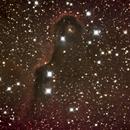 head of IC 1396 (Elephant's trunk nebula),                                stevebryson