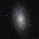 M33 Triangulum Galaxy,                                Rex Groves