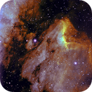EL PELICANO EN BANDA ESTRECHA IC 5070,                                jose