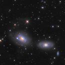 NGC3166,3169,                                Kaori Iwakata