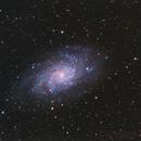 M33,                                Zocky