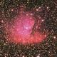 NGC281,                                Eddy Cochez